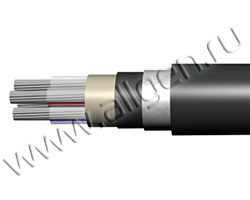 Силовой кабель марки ПвзБбШп