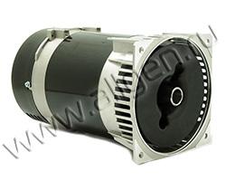 Однофазный электрический генератор Mecc Alte S20W-110