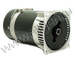 Однофазный электрический генератор Mecc Alte S20W-95