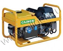 Портативный генератор Caiman Leader 10500XL21 DE мощностью 9.2 кВт)