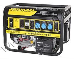Бензиновый генератор FIRMAN FPG6800E1