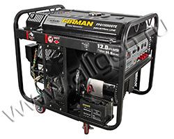 Бензиновый генератор FIRMAN FPG15000STE