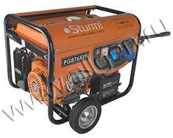 Портативный генератор Sturm PG87651E мощностью 6.5 кВт)