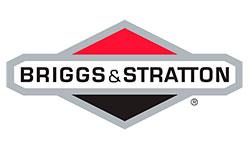 Логотип компании Briggs & Stratton (США)