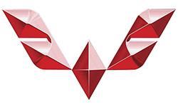 Логотип компании WOLING (Китай)