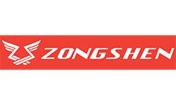 Логотип компании Zongshen (Китай)